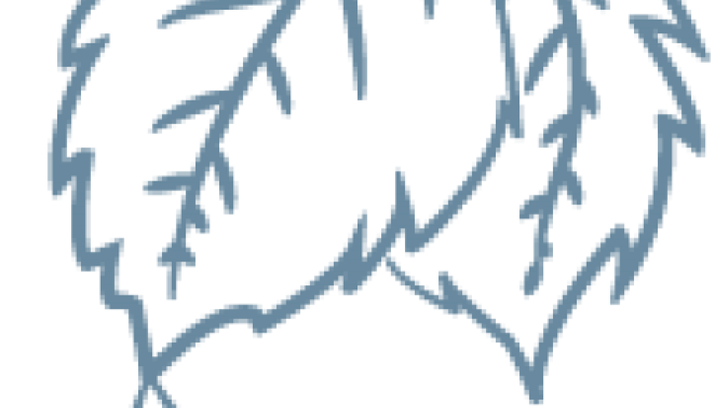 cropped-Favicon1.png